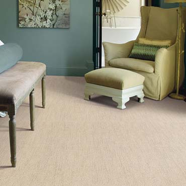 Caress Carpet by Shaw | Boise, ID